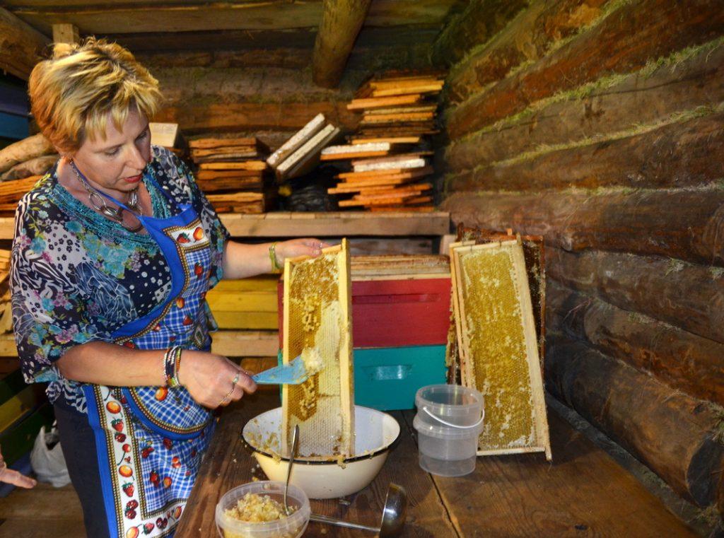 Свята мёду зладзілі ў аграсядзібе «Хутар Малінаўка» (фота)