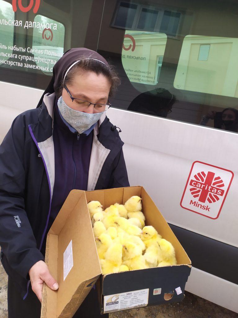 Цыплят и кроликов получили в дар жители Будслава