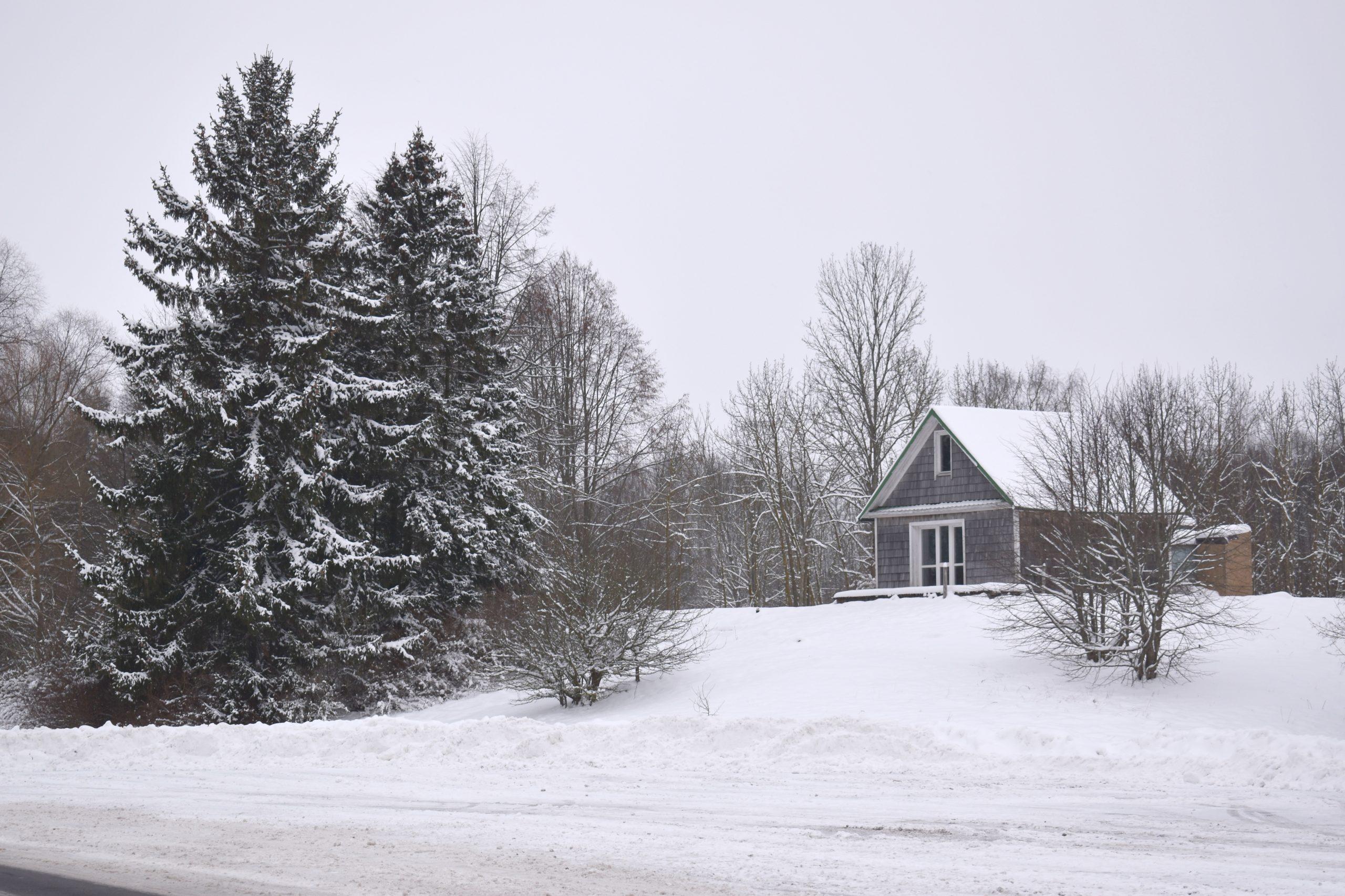 Самый зимний фоторепортаж из Мяделя