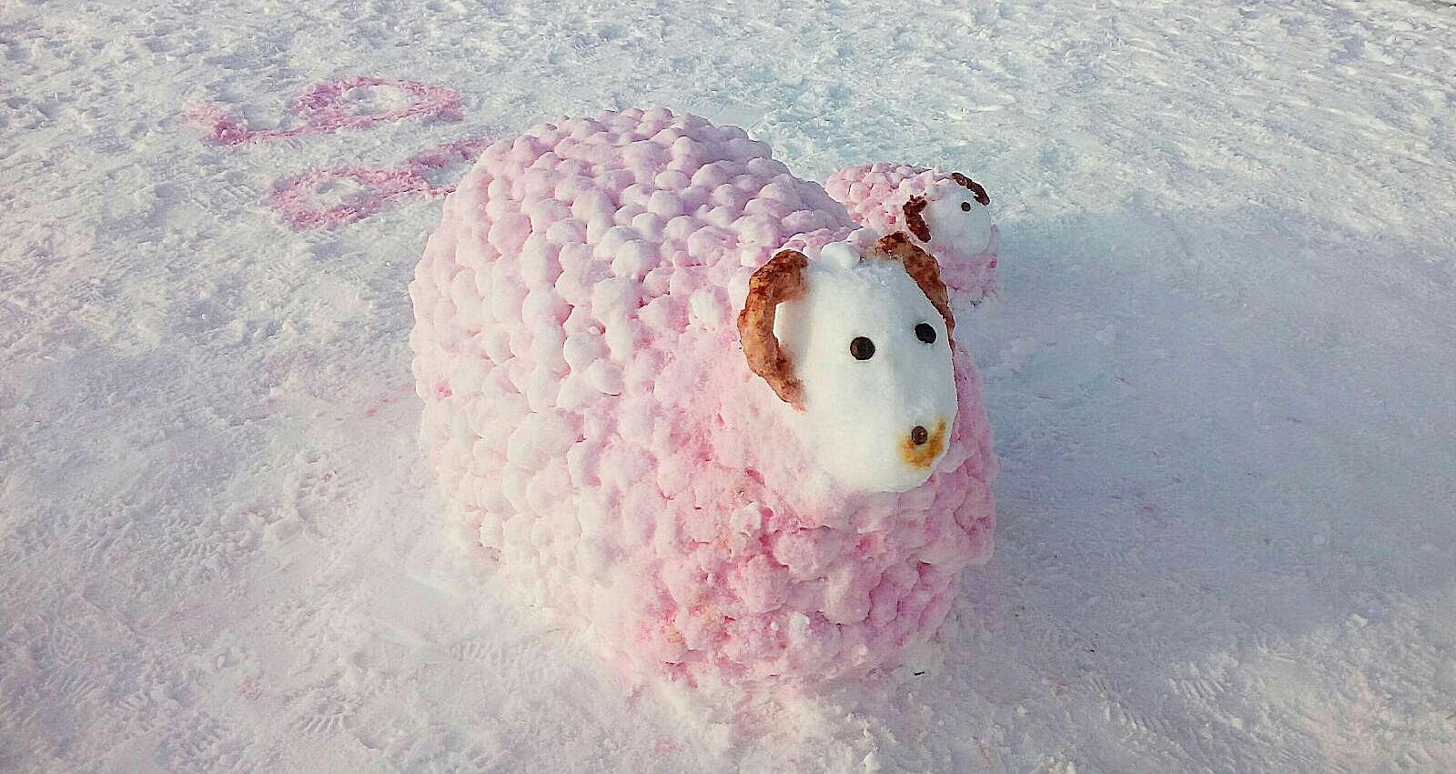 Самые крутые снежные фигуры из к. п. Нарочь