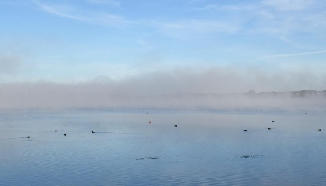 Фотафакт: туманная раніца на возеры Мястра