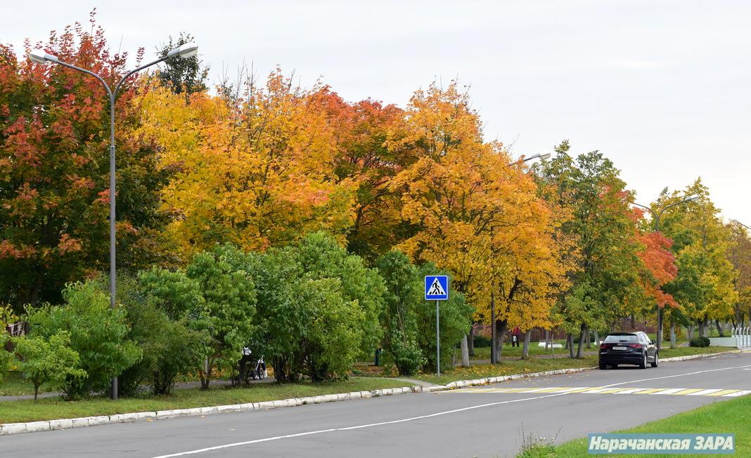 Мядзел у восеньскіх фарбах (фота)